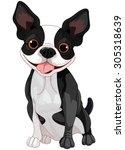 illustration of cute boston... | Shutterstock .eps vector #305318639