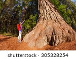 Small photo of Woman pointing at big tree in Redwood California