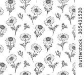 chamomile pattern  vector...   Shutterstock .eps vector #305431520