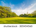 Beautiful Meadow And Tree In...
