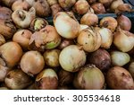 fresh onion | Shutterstock . vector #305534618