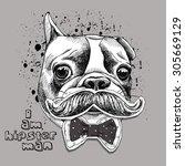 portrait of hipster french...   Shutterstock .eps vector #305669129