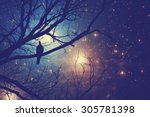 stars and tree with a bird on... | Shutterstock . vector #305781398