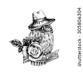 vector owl in a hat  with  rose | Shutterstock .eps vector #305806304