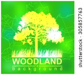 woodland eco banner. green and... | Shutterstock . vector #305857763