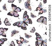 vector butterflies pattern.... | Shutterstock .eps vector #305893838