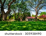 big tree at marukhathaiyawan... | Shutterstock . vector #305938490