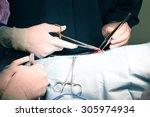 veterinarian doctor in... | Shutterstock . vector #305974934