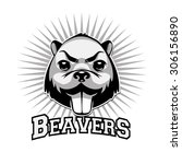 beaver logo black and white... | Shutterstock .eps vector #306156890