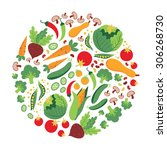 collection of fresh healthy... | Shutterstock .eps vector #306268730