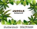 Jungle. Background. Vector...