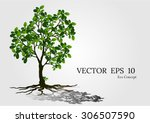 a beautiful tree on white... | Shutterstock .eps vector #306507590