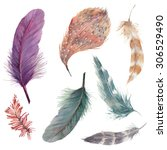 watercolor feathers collection. ... | Shutterstock . vector #306529490