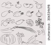 set of illustrations of...   Shutterstock .eps vector #306534698