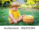 cute boy with a basket of sweet ... | Shutterstock . vector #306552584