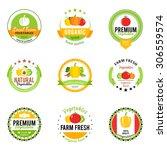 vector vegetables design... | Shutterstock .eps vector #306559574