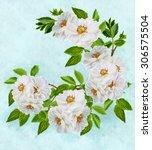 arrangement of flowers branch... | Shutterstock . vector #306575504
