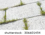 speckled stone pavement with... | Shutterstock . vector #306601454