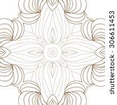 circular   pattern of delicate... | Shutterstock . vector #306611453