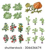 kitchen garden   cartoon  | Shutterstock .eps vector #306636674
