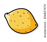 lemon color doodle   Shutterstock .eps vector #306857474