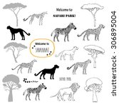 savanna animals set. hand drawn ... | Shutterstock .eps vector #306895004