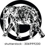 graphic elephant vector sketch  ... | Shutterstock .eps vector #306999200