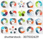 vector circle infographic.... | Shutterstock .eps vector #307032629