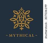 calligraphic luxury symbol.... | Shutterstock .eps vector #307036199