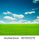 field of grass and perfect sky | Shutterstock . vector #307055270
