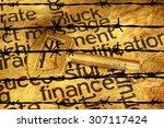 finance and golden key against... | Shutterstock . vector #307117424