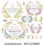 set of badges  logo  wreaths... | Shutterstock .eps vector #307125860
