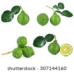 kaffir lime with leave on white ... | Shutterstock . vector #307144160