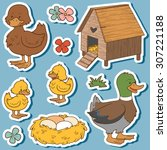 Farm Animals Set  Vector...