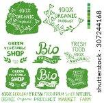 organic bio ecology natural...   Shutterstock .eps vector #307244168