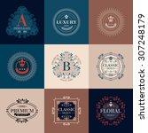 luxury logo template glamour... | Shutterstock .eps vector #307248179