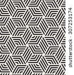 vector seamless pattern. modern ... | Shutterstock .eps vector #307253174