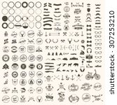 vector set of icons and labels | Shutterstock .eps vector #307253210