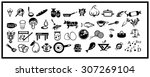 illustrated icons on the theme... | Shutterstock . vector #307269104