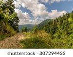 Mountain Path That Leads Towar...