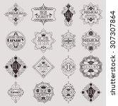 retro design luxury insignias...   Shutterstock .eps vector #307307864