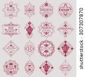 retro design luxury insignias...   Shutterstock .eps vector #307307870