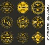 retro design luxury insignias... | Shutterstock .eps vector #307308350