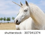 Unicorn Realistic Photography