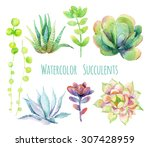 Watercolor Succulents Set. Han...