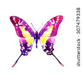 butterflies design | Shutterstock . vector #307479338