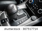 a gear stick  also known as a... | Shutterstock . vector #307517714