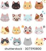 cat face set   Shutterstock .eps vector #307590800