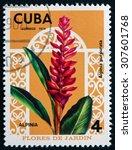Small photo of CUBA - CIRCA 1974: a stamp printed in the Cuba shows Red Ginger, Alpinia Purpurata, Flowering Plant, circa 1974