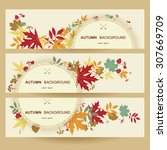 autumn abstract floral... | Shutterstock .eps vector #307669709